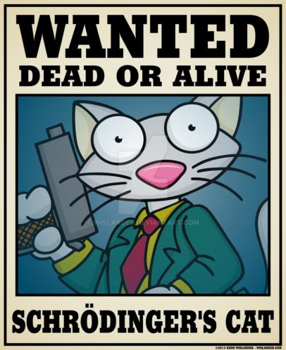 schrodinger_s_cat_by_wislander-d62wjvd